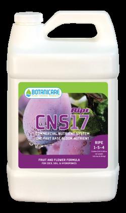 CNS17 Ripe