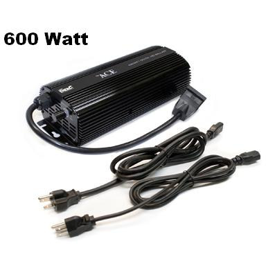 600 Watt ACE BALLAST