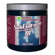 SubCulture M