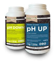 ph up down