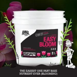 easy bloom